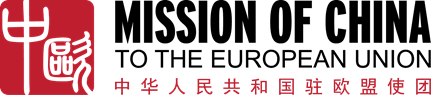 Mission of china to the EU logo